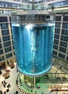 World's Largest Cylindrical Aquarium – AquaDom, Radisson Hotel Aquarium, Berlin; 25 meters high aquarium, with a capacity of 260,000 gallons of water and over 2,500 fish (56 species); visitors can travel through the aquarium using an encased elevator and get to the top where there is a restaurant and an open view of the city; hotel rooms can also experience the underwater view.