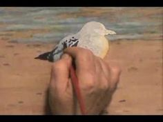 How to Paint a Seagull in Watercolour Watercolor Bird Shore Sea Watercolor Painting Techniques, Watercolor Video, Watercolour Tutorials, Painting Videos, Painting Lessons, Painting & Drawing, Watercolor Paintings, Watercolor Lesson, Painting Tips