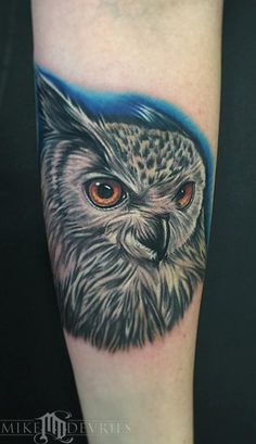 Mike DeVries - Eurasian Eagle-Owl