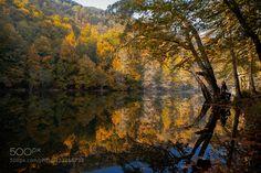 """autumn"" by shark023 #fadighanemmd"