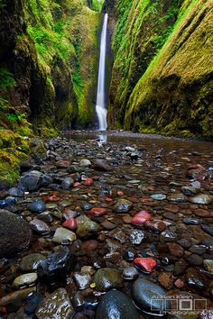 Oneonta Beauty By Adrian Klein Oneonta Falls,Oneonta Gorge in Columbia River Gorge of Oregon.