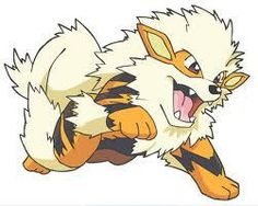 Gotta love Arcanine! Number one favorite pokemon!