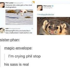 People who genuinely think Dan is the sass master should check Phil out