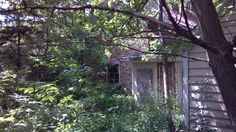 Sometimes picking takes you to houses that have been abandoned for decades!
