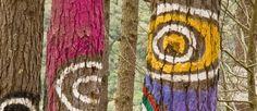 Un bosque sacado de un cuento de hadas. En plena reserva natural de Urdaibai, el artista Agustín Ibarrola pintó y esculpió sobre los pinos distintas figuras, creando una obra que puebla el bosque de habitantes mágicos. Un universo pictórico que se transforma en función del punto de vista desde el que lo miremos, por lo que pasear entre los árboles se convierte en una experiencia única.