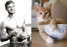 """Grey's anatomy"". Série ""Des hommes et des chatons"",  ""Hot guys and kittens""."