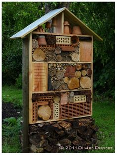 1. lacewings-  box of packing fibers w/ few slots, corrugated roller. 2. bumblebees- box w/ hole 10 mm diameter & flight board.  3. bees (leafcutter) & wasps- rolled reed mat.  solitary bees & wasps (Osmiae)- dry wood w/ holes.  other bees- hollow bricks filled w/ mix of clay & straw.    4. some Hymenoptera (hoverflies)- stems in marrow (brier rose, raspberry, elderberry, buddleia). 5. eating insects- piled old wood. 6. earwigs- flower pot filled w/ wood fibers. 7. beetles- pieces of…