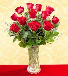 One Dozen Red Roses - Vased