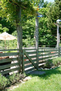 My Great Outdoors:  Maxwell & Sara Kate's Big Garden