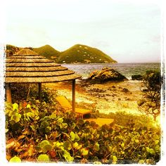 Cabana with a view. #beach #cabana #tortola #frenchmansbvi