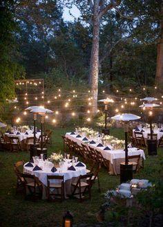 1 Romantic Backyard Wedding Decor Ideas On a Budget wedding winter Wedding Themes, Wedding Tips, Our Wedding, Wedding Venues, Dream Wedding, Trendy Wedding, Wedding Planning, Elegant Wedding, Light Wedding