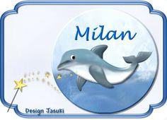 Button Delfin von Jasuki auf DaWanda.com