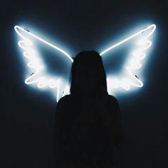 Led de asas
