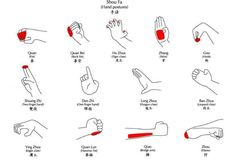 Kung Fu hand postures www.AKBHD.weebly.com