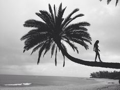 Find images and videos about girl, summer and black and white on We Heart It - the app to get lost in what you love. Station Balnéaire, Island Girl, Beach Bum, Photos, Pictures, Belle Photo, White Photography, Strand, Summer Vibes
