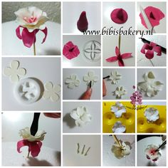 Hi everybody.  This is going to be a flower pictorial week as you might have noticed. Yesterday was my wafer flower, today is my fuchsia pictorial. It is completely made with gumpaste. Enjoy!  xxx Bibi