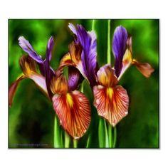 Triadic Color Scheme -  Purple Irises Digital Art Print