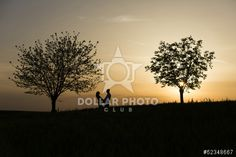 Love Silhouette, Roots And Wings, 3d Assets, Royalty Free Images, Club, Stock Photos, Sunset, Woman, Illustration