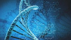 An Overview of the Human Genome Project