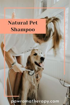 Natural Pet Shampoo. Handmade natural shampoo for dogs, cats and other small pets. Made from homemade castile soap using extra-virgin olive oil and organic coconut oils and essential oils. A biodegradable natural dog soap. Great as an all purpose shampoo. Safe and gentle. Dog Mom Gifts, Gifts For Pet Lovers, Pet Care Tips, Dog Care, Dog House Kit, Dog Food Delivery, Tattoos For Dog Lovers, Puppy Pics, Holistic Care