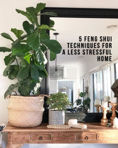 5 Feng Shui techniques for a less stressful home - {dwell} - einrichtungstipps Feng Shui Tools, Feng Shui And Money, Feng Shui Plants, Feng Shui Art, How To Feng Shui Your Home, Feng Shui House, Feng Shui Bedroom, Feng Shui Mirrors, Feng Shui Items
