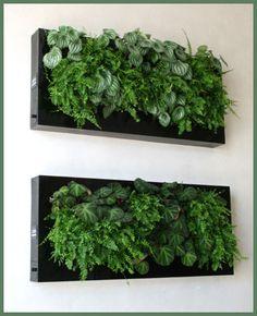 Jardim-Vertical-Quadro-Vivo-de-Plantas-Para-Paredes