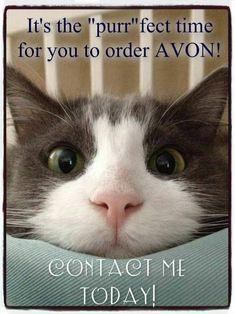 Direct sales pet companies