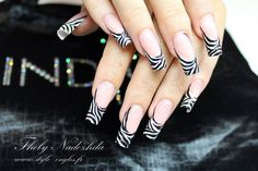 Zebra print by Nadia Thely! Magnetic Nail Design