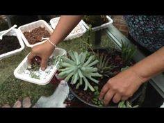Cómo reciclar un sartén con Happy Pot - YouTube