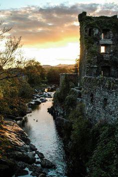Old irish castle / Magical Woodlands