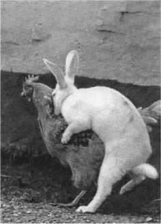 Today, this is how Easter Eggs are made.