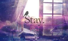 Stay. Stay with me.