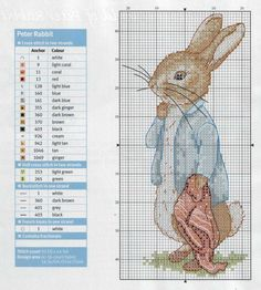 Peter Rabbit with  Blanket