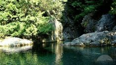 Adventure Attractions in Vancouver http://goo.gl/aekS3h * Lynn Canyon Park * Go for Bungee Jumping * Paragliding Book Flights Now http://goo.gl/EvTgS9 Call:- 1-888-206-2080