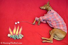Raising the Ruf: Campfire