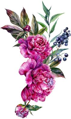 Flowers Illustration, Illustration Blume, Floral Illustrations, Watercolor Illustration, Art Floral, Floral Frames, Design Floral, Watercolor Artwork, Watercolor Print