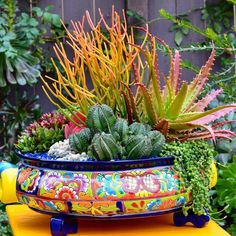 35 Classic Mexican Planters Ideas Perfect to your interior - All For Garden Mexican Courtyard, Mexican Patio, Mexican Garden, Mexican Hacienda, Mexican Home Decor, Mexican Tiles, Mexican Decorations, Succulents In Containers, Cacti And Succulents