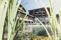 Hotel Nesslerhof, Grossarl: into the alpine heaven - LIFESTYLEHOTELS Natural Swimming Ponds, Natural Pond, Das Hotel, Hotel S, Holiday Program, Alpine Meadow, Spa, Rest And Relaxation, Small Farm