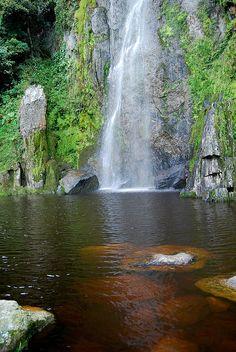 Parque Nacional Dinira / Dinira National Park.Estado Lara, Venezuela.