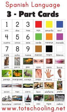 Spanish Language 3 Part Cards Free Spanish Language Cards from Totschooling Preschool Spanish Lessons, Spanish Lesson Plans, Spanish Activities, Spanish Language Learning, Teaching Spanish, Learning Spanish For Kids, Learning Italian, Montessori Activities, Toddler Learning