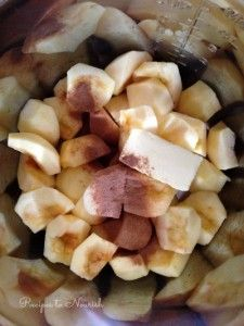 Instant Pot Applesau