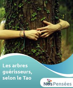 Les arbres guérisseurs, selon le Tao Les arbres sont des amis #silencieux dont nous avons tendance à nous rapprocher de manière #spontanée. Nous recherchons leur ombre, nous nous adossons à leur tronc ou nous y grimpons en nous lançant des défis. Les arbres exercent une attraction #naturelle sur l'être humain. #Emotions