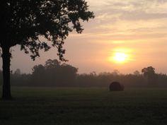 A East Texas sunrise