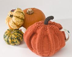 Pumpkin Tea Cosy Knitting Kit