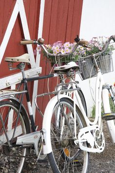 Old bicycles with flowers