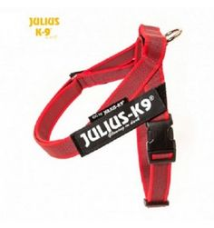 JULIUS IDC BELT HARNESS ROSSO TG MINI MINI COLOR&GRAY #petshouseacerra    19,00 €    Clicca sul link -> https://www.pets-house.it/idc-belt-harnesses/6566-julius-idc-belt-harness-rosso-tg-mini-mini-colorgray-5999053661847.html