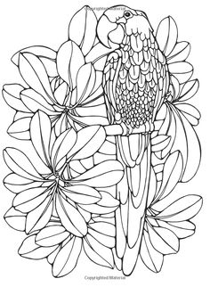 Printable coloring pages by ruth heller geometric Blank Coloring Pages, Printable Coloring Pages, Coloring Sheets, Coloring Books, Bird Drawings, Stained Glass Patterns, Silk Painting, Free Coloring, Colorful Pictures