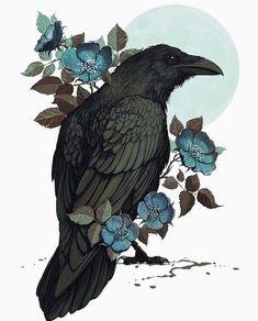 Rabe - tattoo - Informations About Rabe - tattoo - Pin You can easily us Crow Art, Raven Art, Bird Art, Pet Raven, Mago Tattoo, Doodle Art, Illustration Manga, Bird Drawings, Oeuvre D'art