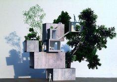 Ikimono Architects and the Aberrant Ground