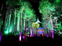 the magical Sherwood Forest at the Rothbury Music Festival 2009
